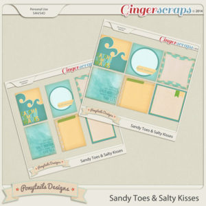 ponytails_sandysalty_journals