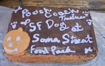 San Francisco Dog Trainer