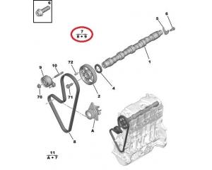 Timing belt sets @ Hmk Auto