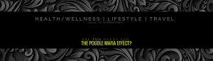 PR, Marketing and branding for health, lifestyle and travel