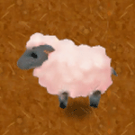 Cotton Sheep