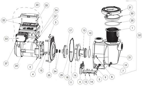 .Pentair IntelliFlo Variable Speed Pump Diagram
