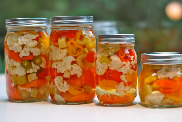 January Giardiniera Poole Party Of 5