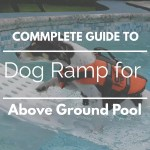 The 8 Best Dog Ramp for Above Ground Pool: Ladder and Stair Too