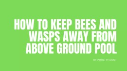How to Keep Bees and Wasps Away From above Ground Pool