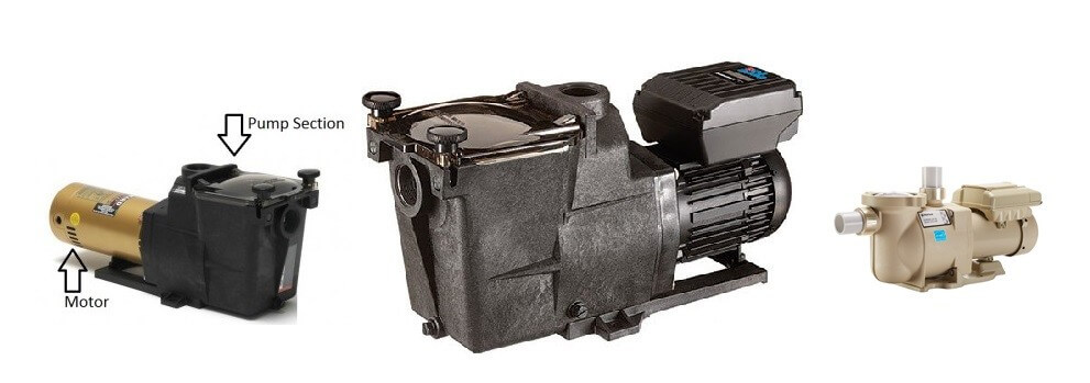 Pool pump reviews best quietest variable speed prices - Most energy efficient swimming pool pump ...
