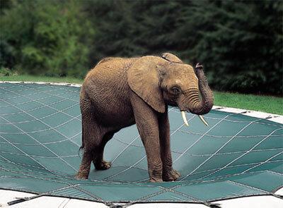 Loop Loc pool Cover elephant