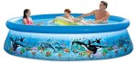 Intex Ocean Reef Pool Review