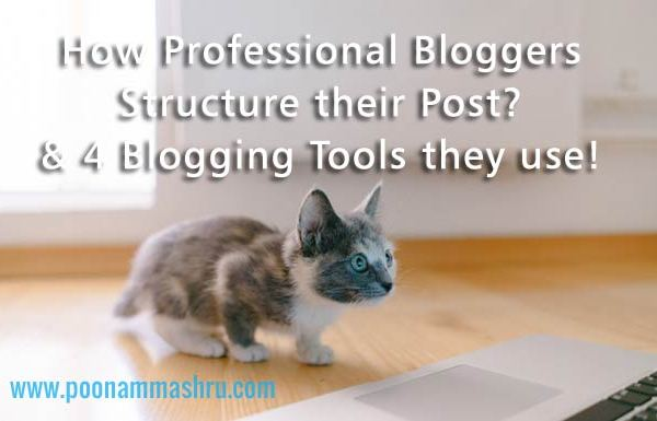 blogging tools and blog structure poonammashru blog