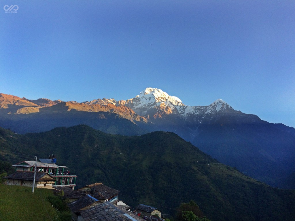 Himalayas seen from Ghandruk