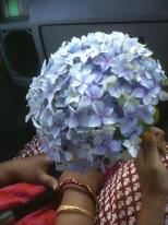 Flowers from Meghalaya