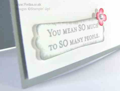 Stampin' Up! UK Demonstrator Pootles - Everything Eleanor is One in a Million Close Up