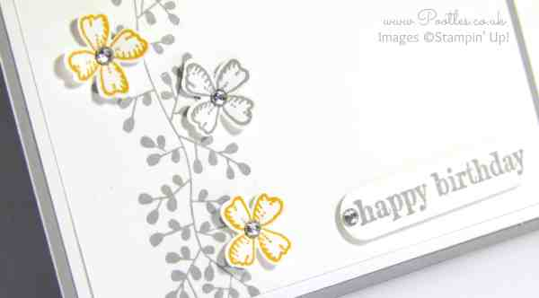 Stampin' Up! Demonstrator Pootles - Something to Say with Bordering Blooms close up