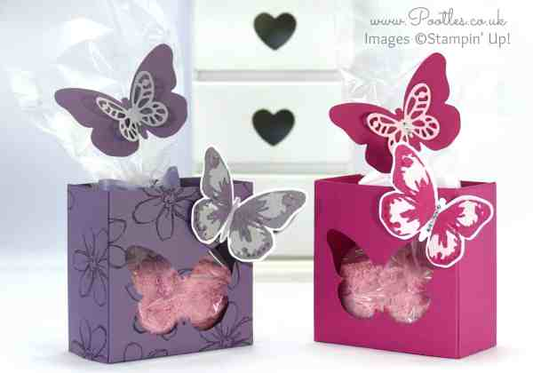 Stampin' Up! Demonstrator Pootles - Bold Butterflies Big Box. Amended on Camera...