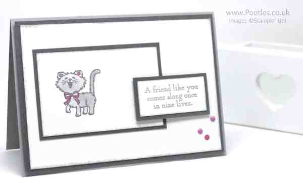Stampin' Up! Demonstrator Pootles - Pretty Kitty - To Bow or Not To Bow No Bow