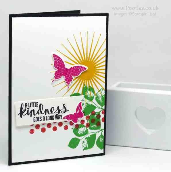 Stampin' Up! Demonstrator Pootles' Colour Challenge 003