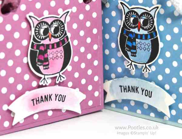 Stampin' Up! Demonstrator Pootles - Adorable Owl Bag and Goodies Giveaway Watercolour Detail