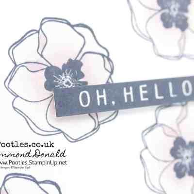 Oh Hello, Colour Me Happy