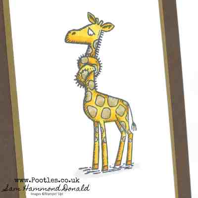 Back on Your Feet Giraffe with Blends