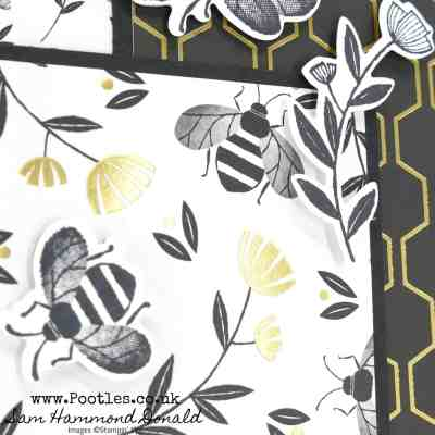 Golden Honey Bee Layered Card Idea
