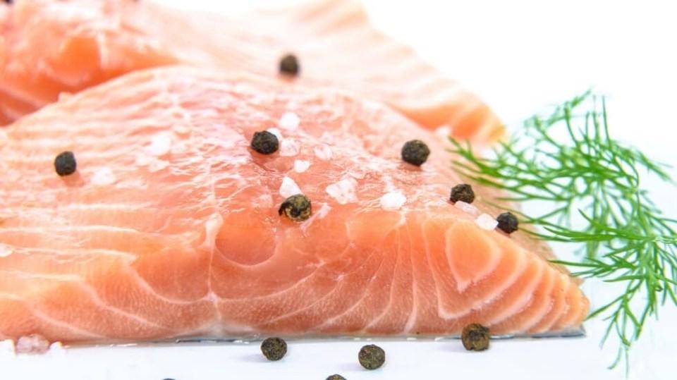 salmón fresco - conservación y maduración de alimentos