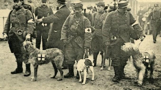 Des ambulanciers au front pendant la première guerre mondiale, 1914-1918 (Photo issue de la collection du musée de la Grande Guerre).