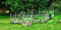 Great Garden Fence Ideas for 2017 - How to Build a Garden ...