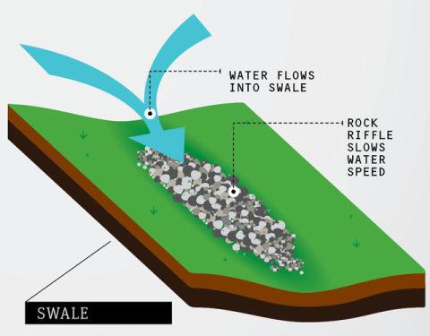 berm french drain dry swale