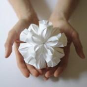 bloom_white_matt_shlian_eightemperors1-e1354372830134