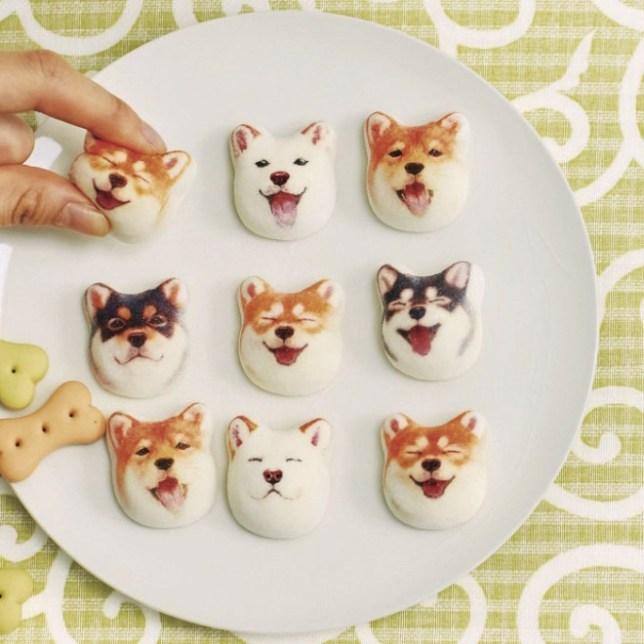 Shibainu marshmallows 01