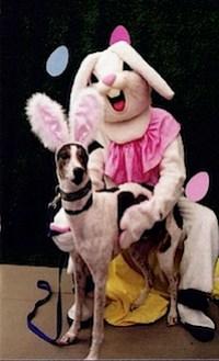 horror_bunnies44.jpg
