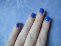 Bleu majorelle - Yves Saint Laurent (8)