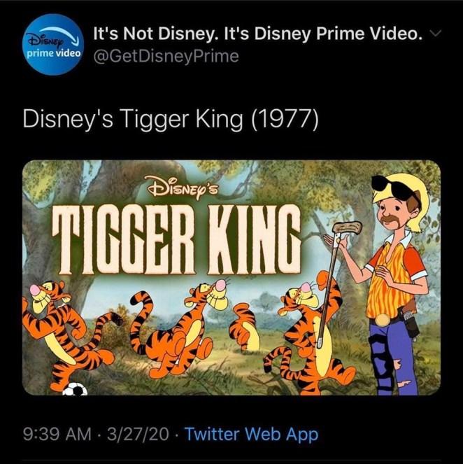 funny tiger king meme netflix