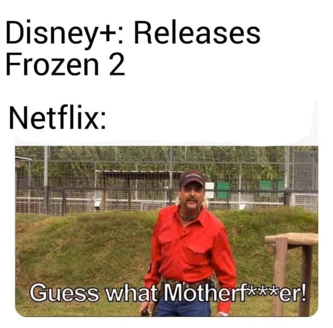netflix joe exotic memes