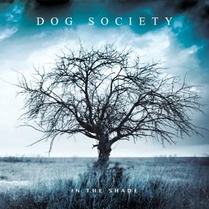Dog Society In The Shade