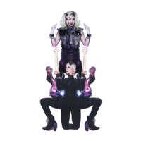 Plectrumelectrum_Album_Cover