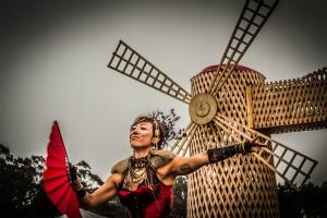 windmill_small