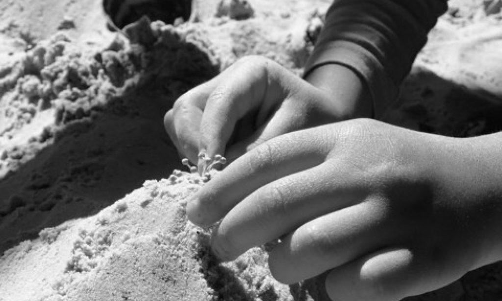 cropped-sand.jpg