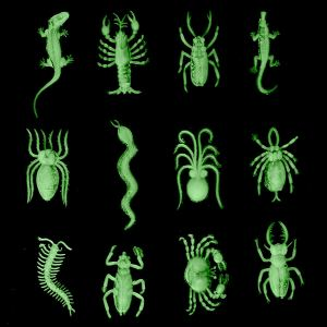 Various insects and arachnid plastic toys that are glowing green in the dark.