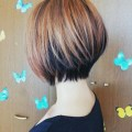 Pics photos 30 short hairstyles for winter layered crop hairstyle