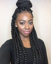 pretty african american braided