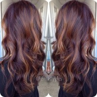 Mahogany Hair With Blonde Highlights | hairstylegalleries.com
