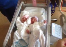 Newborn-twins