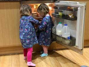twins-in-fridge