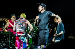Red Hot Chili Peppers, Boxen