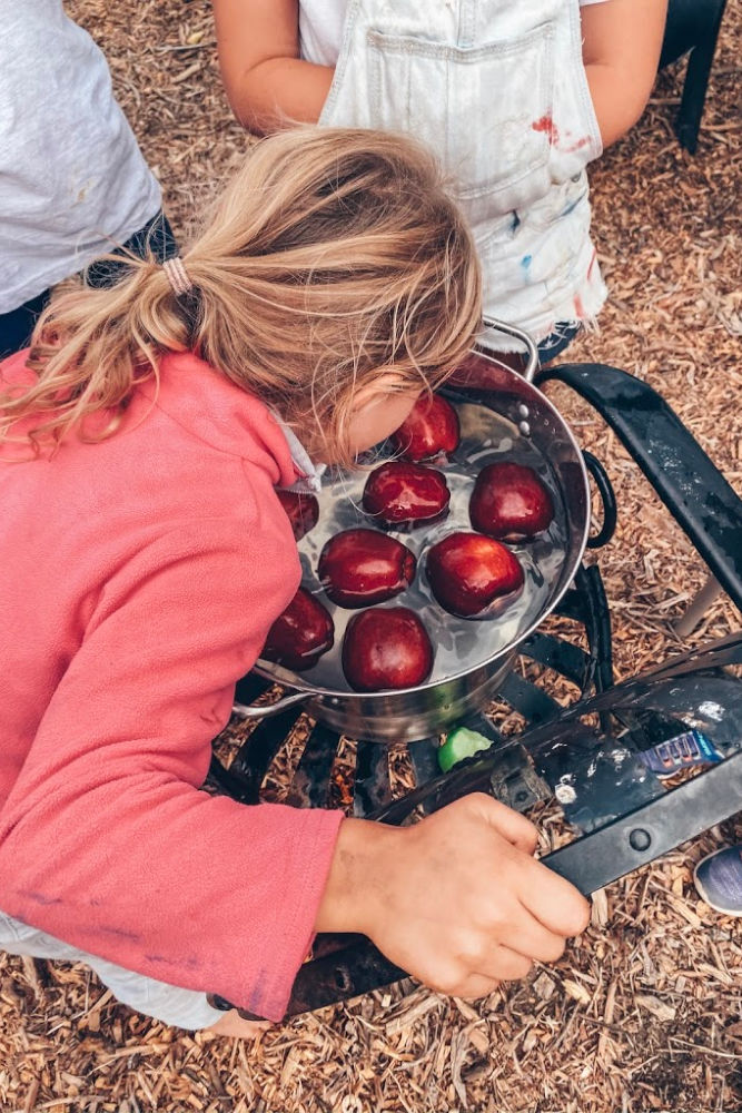 Fall Harvest Party Ideas bobbing for apples | Poplolly co