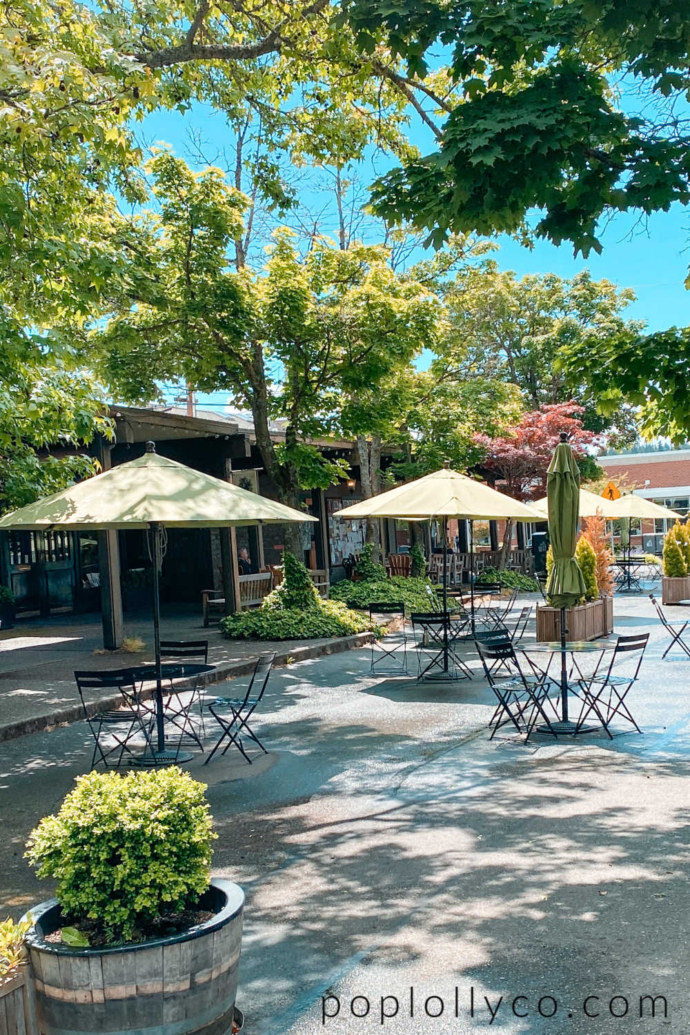 things to do in Bainbridge Island | downtown Bainbridge Island | Poplolly co