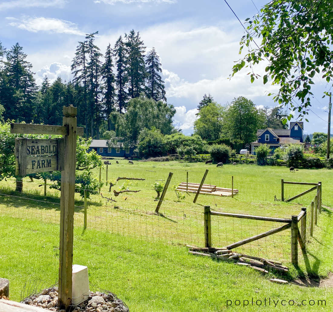 Seabold Farm in Bainbridge Island | Poplolly co