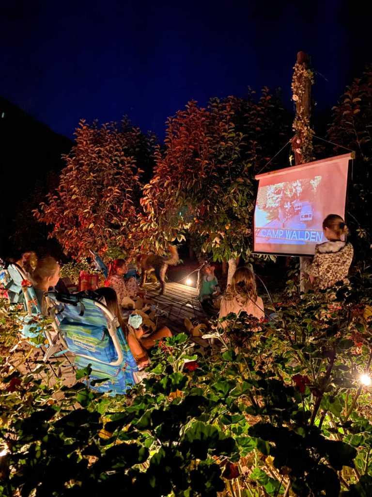 outdoor movie ideas | rustic drive in birthday | Poplolly co