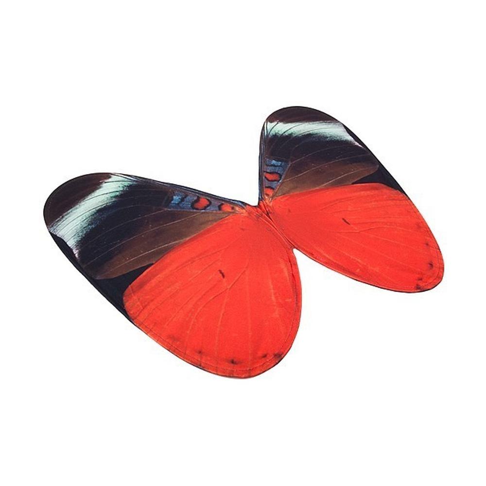 Verkleed vleugels Queen FlasherSpread your little wings